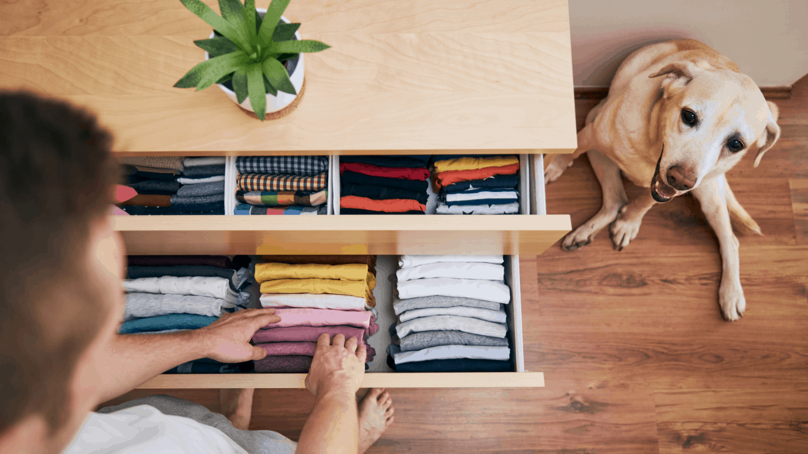5 home organization tips
