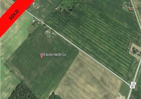 ADA, Ohio, ,Farm,For Sale,5618
